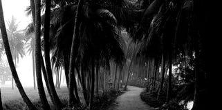 Ländliche indische Straße lizenzfreie stockfotografie