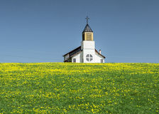 Ländliche Kirche auf einem Gebiet mit gelben Blumen Lizenzfreie Stockbilder