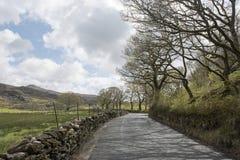 Ländliche kurvenreiche Straße umgeben durch Hügel Lizenzfreies Stockbild