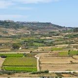 Ländliche Landschaft auf Insel Gozo Lizenzfreies Stockbild