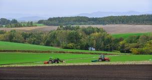 Ländliche Landschaft in Biei, Hokkaido, Japan Lizenzfreie Stockfotografie