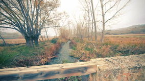 Ländliche Landschaft, Brücke und Felder der Natur stock footage