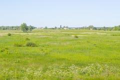 Ländliche Landschaft des Dorfs mit grünem Feld und Landhäusern, Sommerwiese, Gras auf einer Weide, Feld, Naturhintergrund lizenzfreies stockbild