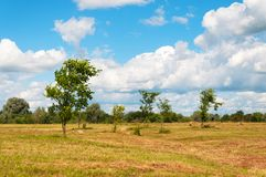 Ländliche Landschaft des Feldes der Heuschober unter bewölktem Himmel Stockfotos