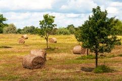 Ländliche Landschaft des Feldes der Heuschober unter bewölktem Himmel Lizenzfreies Stockfoto