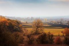 Ländliche Landschaft des Herbstes im Nebel Lizenzfreie Stockfotos