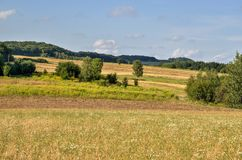 Ländliche Landschaft des Sommers Lizenzfreie Stockbilder
