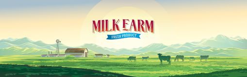 Ländliche Landschaft des Sommers mit Kühen und Bauernhof lizenzfreie abbildung