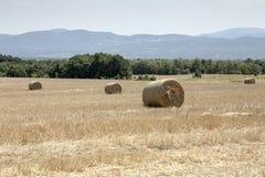 Ländliche Landschaft des Sommers mit Stroh rollt auf dem Gebiet Stockbilder