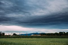 Ländliche Landschaft des Weizen-Feldes und des Weinbergs im Süden von Spanien Lizenzfreie Stockfotografie