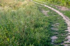 Ländliche Landschaft an einem sonnigen Tag im Sommer stockfotografie