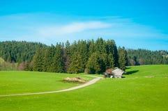 Ländliche Landschaft eines grünen Feldes im Bayern Deutschland Stockbild
