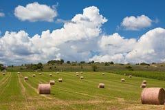 Ländliche Landschaft, Frankreich Lizenzfreie Stockfotografie