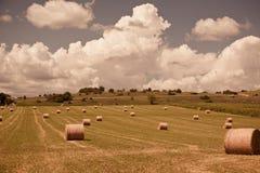 Ländliche Landschaft, Frankreich Stockfoto