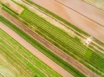 Ländliche Landschaft gesehen von der Luft Bebaute Felder gesehen von der Vogel ` s Augenansicht Farben und Seitenlinien Stockbilder