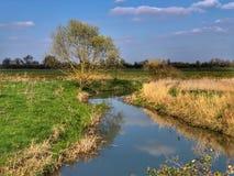 Ländliche Landschaft im Frühjahr lizenzfreies stockbild