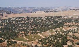 Ländliche Landschaft in Jordanien Stockbild