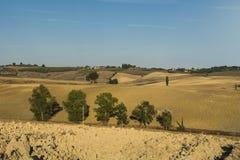 Ländliche Landschaft mit gepflogenen Feldern Stockfotos