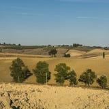Ländliche Landschaft mit gepflogenen Feldern Lizenzfreie Stockfotografie