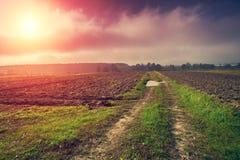 Ländliche Landschaft mit gepflogenen Feldern Stockfotografie