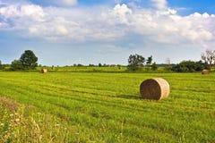 Ländliche Landschaft mit Heuschobern und Windmühlen hinter ländlichem Sommer gestalten landschaftlich Typische europäische Hirten Lizenzfreie Stockfotografie