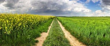 Ländliche Landschaft mit Weg und grünes gelbes Feld am Sturm Lizenzfreie Stockfotos