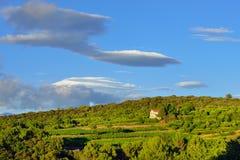 Ländliche Landschaft Provence, Frankreich Stockfotografie