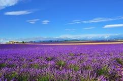 Ländliche Landschaft Provence, Frankreich Stockbilder