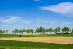 Ländliche Landschaft in Roztocze, Polen Lizenzfreies Stockfoto