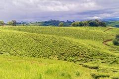 Ländliche Landschaft in Tansania Stockfotos