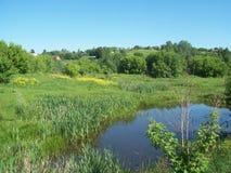 Ländliche Landschaft und Ackerland Stockbilder