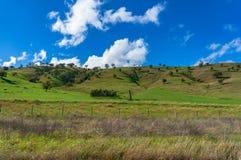 Ländliche Landschaft von blühenden Landschaften, von Ackerland und von hellem blauem Himmel Lizenzfreie Stockfotografie