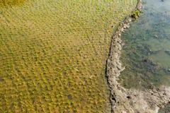 Ländliche Landschaft von Indien Lizenzfreies Stockfoto