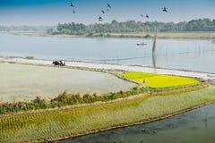 Ländliche Landschaft von Indien Lizenzfreie Stockfotografie