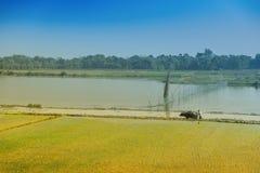 Ländliche Landschaft von Indien Stockbild