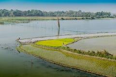 Ländliche Landschaft von Indien Stockfotografie