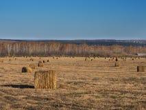 Ländliche Landschaftsfeld-Wiese mit Sonnenaufgang Hay Bales After Harvest Ins Sunny Evening At Sunset Or im Spätsommer Stockbilder