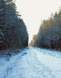 Ländliche Landstraße am schneebedeckten Tag des Winters Lizenzfreie Stockfotografie