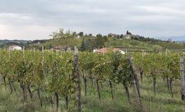 Ländliche Mittelmeerlandschaft mit Weinbergen und Dorf bei Sonnenuntergang, Slowenien Lizenzfreies Stockbild