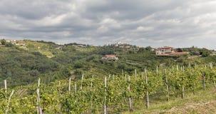 Ländliche Mittelmeerlandschaft mit Weinbergen und Smartno-Dorf, Slowenien Stockfotos