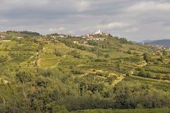 Ländliche Mittelmeerlandschaft mit Weinbergen und Smartno-Dorf, Slowenien Lizenzfreie Stockfotos