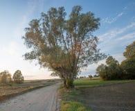 Ländliche sandige Straße des Landes Lizenzfreies Stockfoto