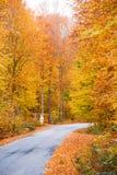 Ländliche Straße des Herbstes Stockbilder