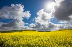 Ländliche Sun-Explosion Lizenzfreie Stockbilder