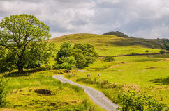 Ländliche Szene in Cumbria Stockfoto