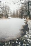 Ländliche Szene des Winters mit Nebel und gefrorenem Flussweinleseeffekt Stockfotos