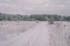 ländliche Szene des Winters mit Schnee und Weiß stellt Weinleseeffekt auf lizenzfreie stockfotografie