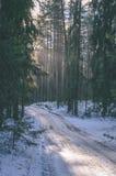 ländliche Szene des Winters mit Schnee und weißem Waldweinleseeffekt Lizenzfreie Stockfotos