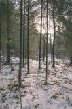 ländliche Szene des Winters mit Schnee und weißem Waldweinleseeffekt Lizenzfreies Stockfoto