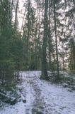 ländliche Szene des Winters mit Schnee und weißem Waldweinleseeffekt Lizenzfreies Stockbild